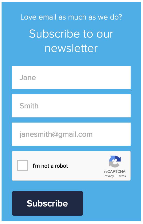 display block email capture form